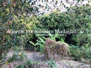 Vente-terrain-vue-mer-nosybe-madagascar5.jpg