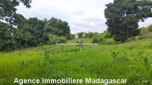 vente-terrain-vue-mer-nosybe-madagascar2.jpg