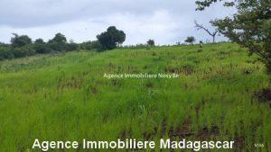vente-terrain-vue-mer-nosybe-madagascar3.jpg